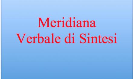 Meridiana – verbale di sintesi