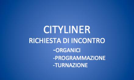 CITYLINER-RICHIESTA DI INCONTRO